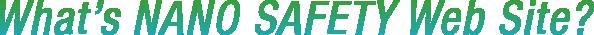 What's NANO SAFETY Web Site?
